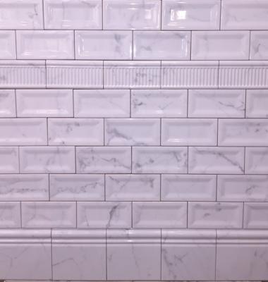 3 Quot X 6 Quot Equipe Carrara Inmetro Ceramic Subway Tile